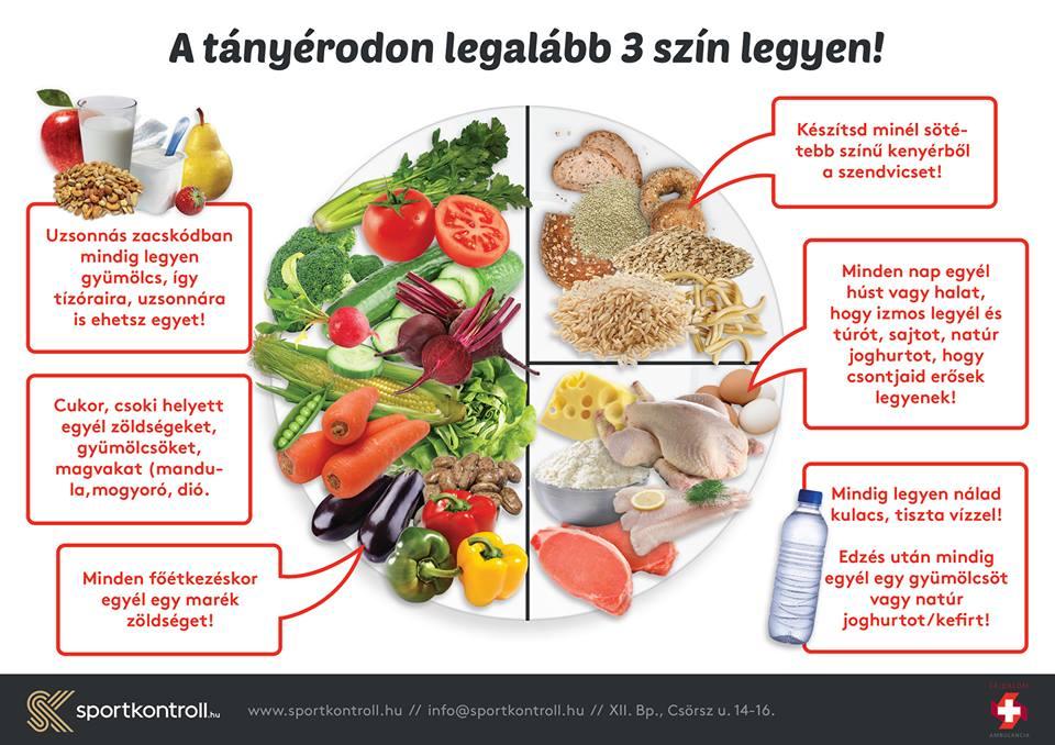 okostányér új diéta fogyókúrás diéta